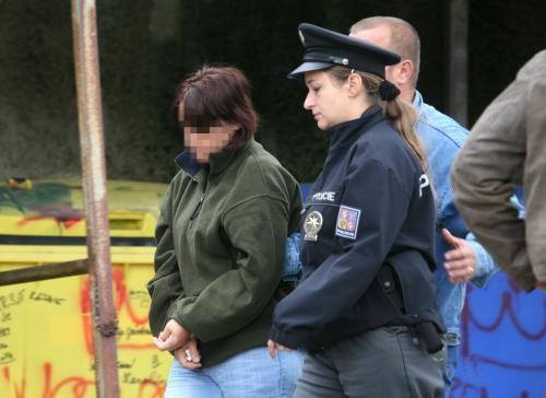 Žena obviněná z pokusu o otravu dcery fridexem