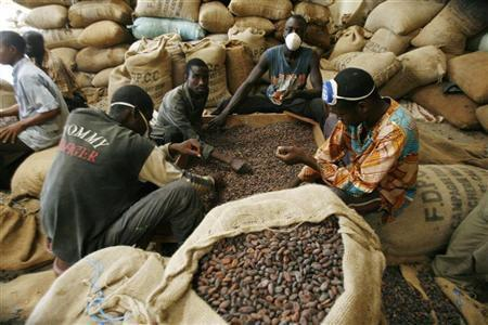 Kontrola kvality kakaových bobů