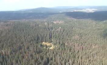 Šumavské lesy