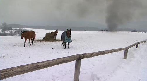 Natáčení seriálu Znamení koně