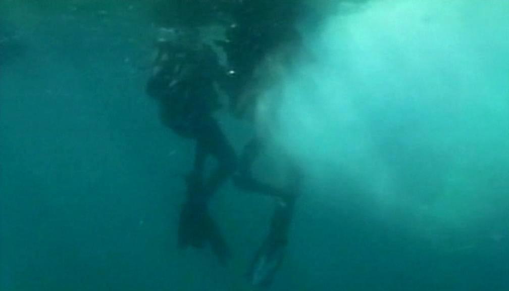 Mexičtí potápěči osvobozují keporkaka