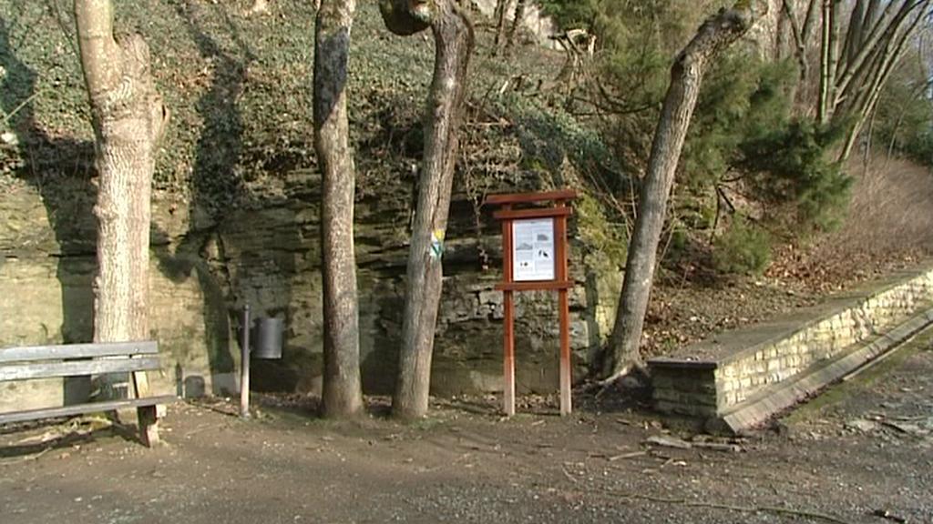 Zámecký park v Opočně