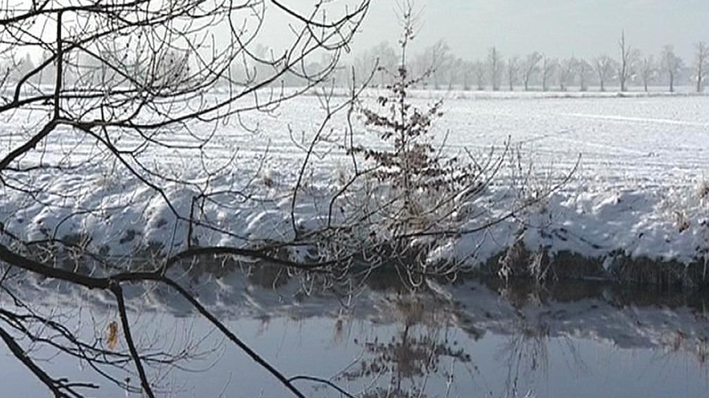 Louky u řeky Malše