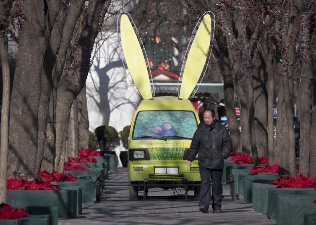 Čínský rok králíka