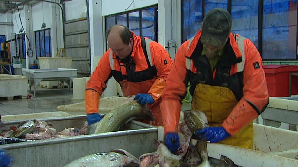 Norští rybáři