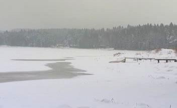 Vypuštěný rybník Komorník
