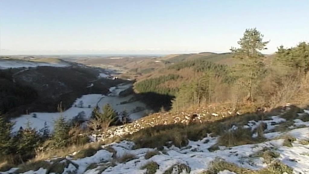 Krajina ve Walesu