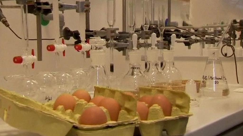 Testy vajec