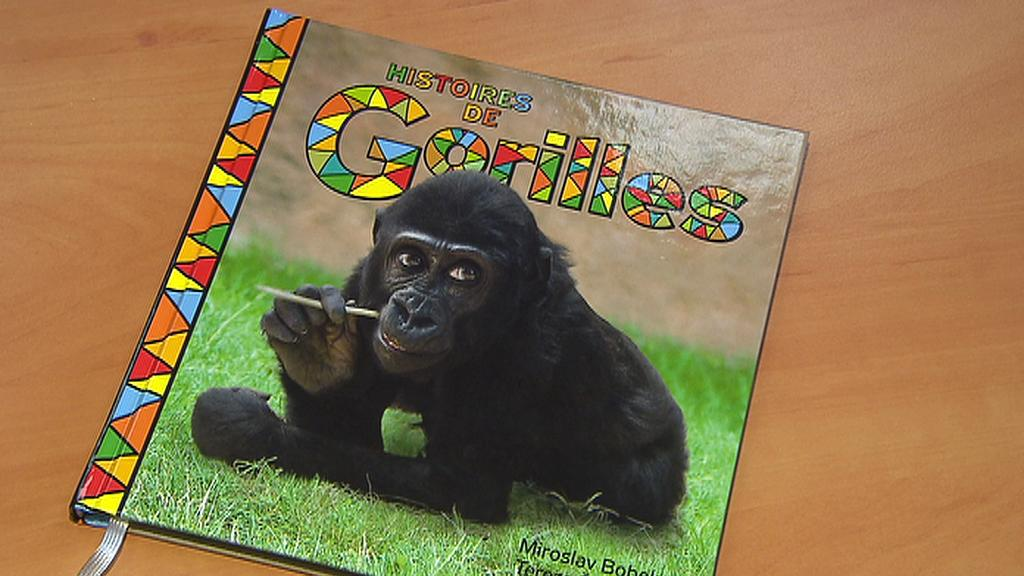 Knížka pohádek o gorilách