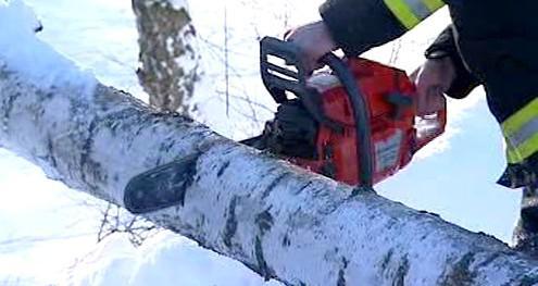 Odklízení polámaných stromů