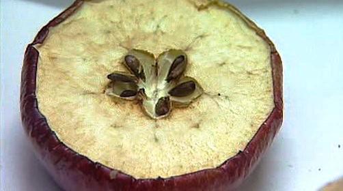 Vánoční zvyk - krájení jablka