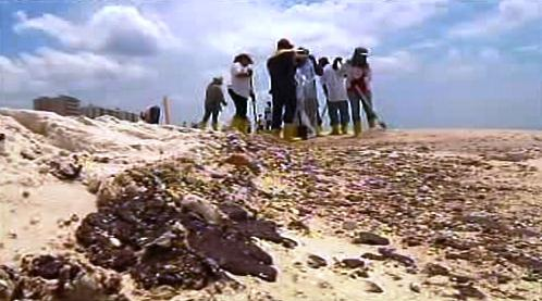Ropa zasáhla pláže u Mexického zálivu