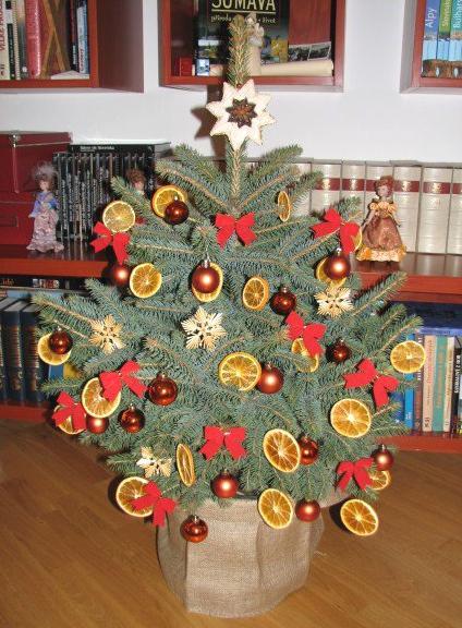 Vánoční stromek k zapůjčení