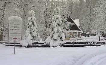 Chebský les v Bavorsku