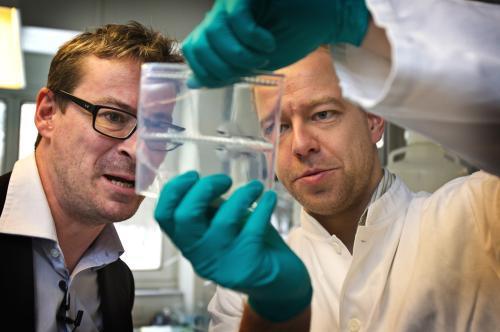 Výzkum lidského genomu