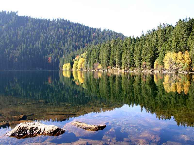 Černé jezero na Šumavě