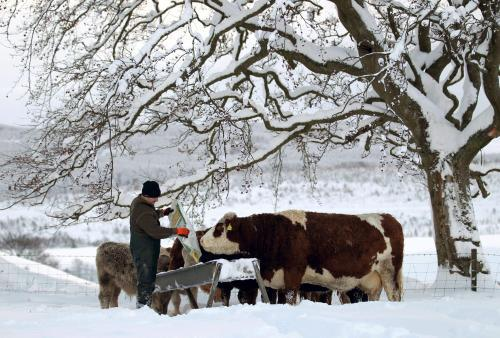 Střední Skotsko se potýká se sněhem
