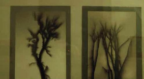 Obrazy z broumovské výstavy