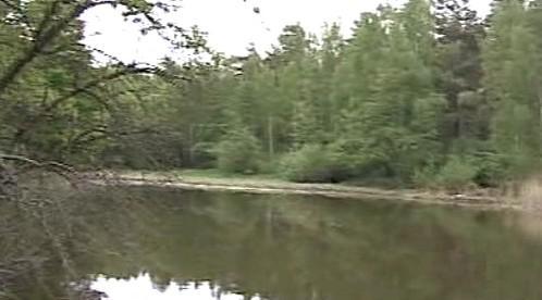 Rybník Žebrák na Novohradsku