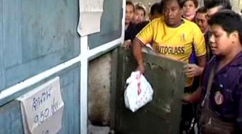 Plody byly nalezeny v kontejnerech márnice