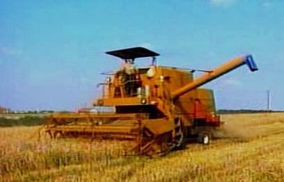 Zemědělství v Polsku