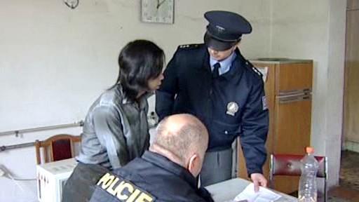 Kontrola cizinecké policie