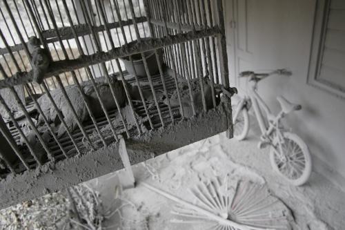 Erupci Merapi nepřežili ani papoušci