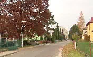 Broumov – Město stromů