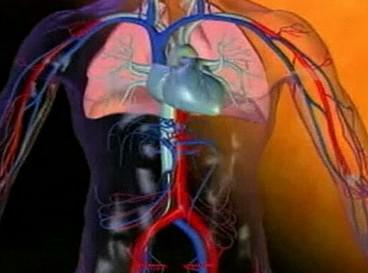Nová metoda chlazení krve
