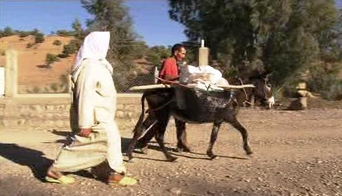 Maročané