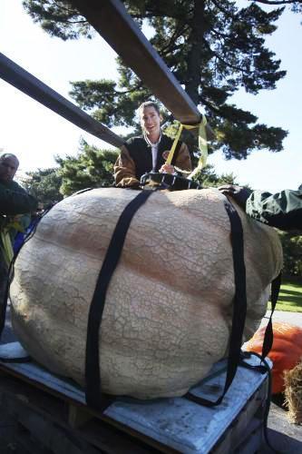 Nejtěžší dýně váží 821,24 kilogramu