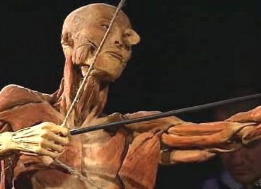 Výstava preparovaných lidských těl