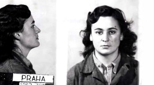 Dagmar Šimková