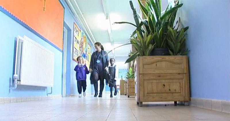 Rostliny ve škole