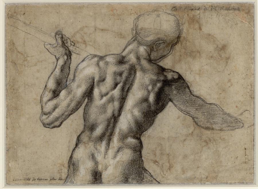 Kresba Michelangela Buonarrotiho (kolem roku 1504)