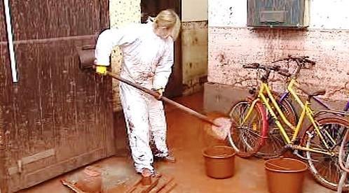 Odstraňování toxického kalu