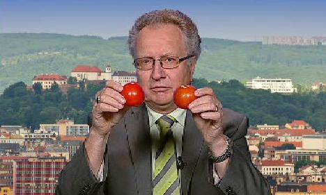 Rozdíl mezi českým a dovozovým rajčetem