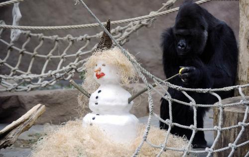 Richard a sněhulák