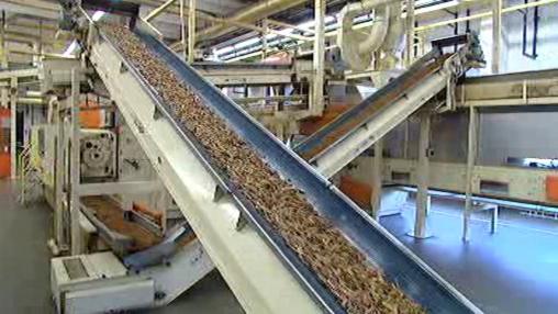 Zpracování tabáku