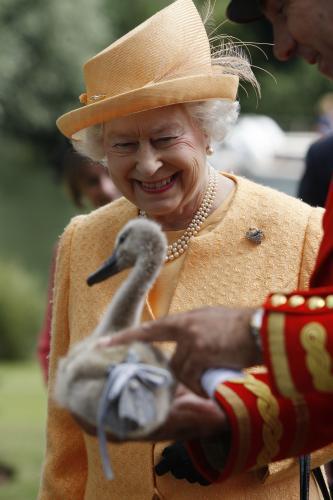 Královna Alžběta II. při sčítání labutí