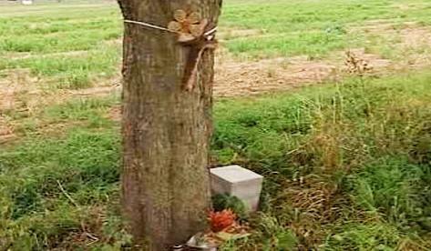 Pomníček zavražděné stopařky