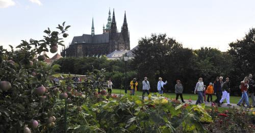 Produkční zahrady Pražského hradu