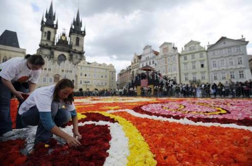 Květinový koberec