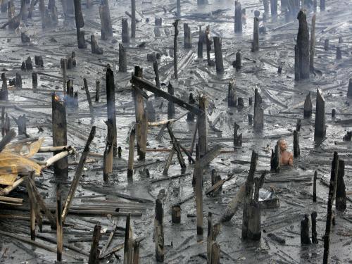 Požáry v Manile