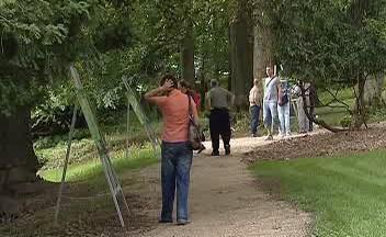 Připravovaná stezka po zaniklých obcích Slavkovského lesa