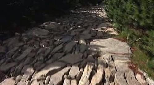 Cesta opravená tzv. štětováním