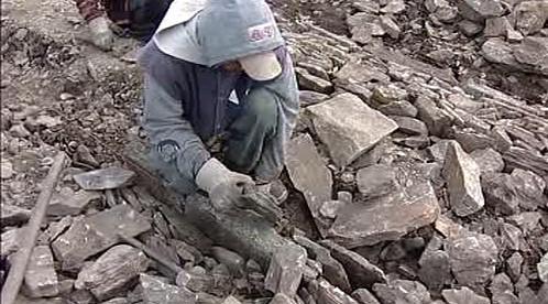 Pracovník stavební firmy při štětování