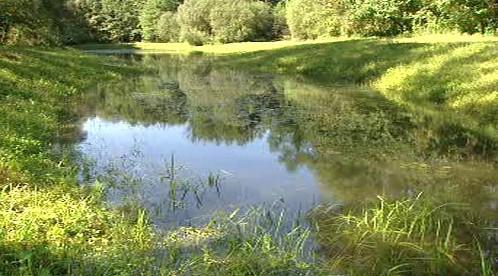 Tůně v povodí potoka Liběchovka