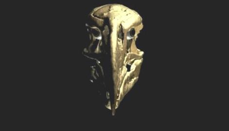 Lebka praptáka Andalgalornis