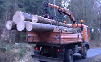 Lesnické práce